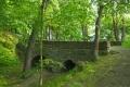 Starý most v Bedřichových sadech - pozůstatek týnského hradu